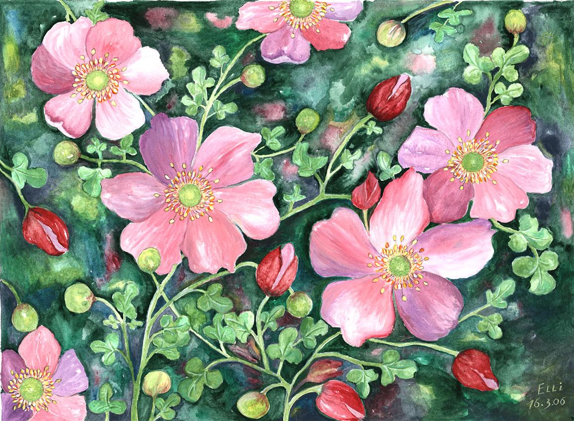 Herbstanemonen | Größe: 36 x 26 cm