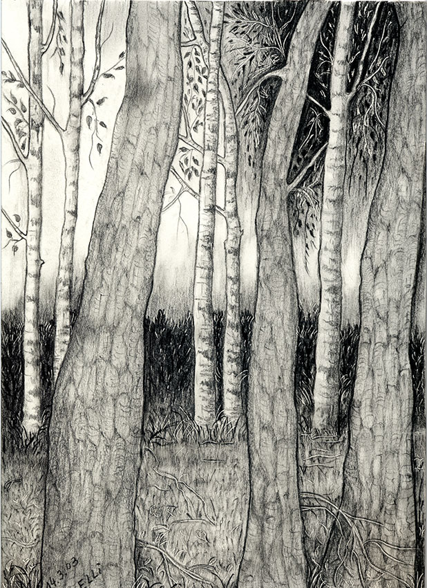Kohlezeichnung der Künstlerin Ella Beck