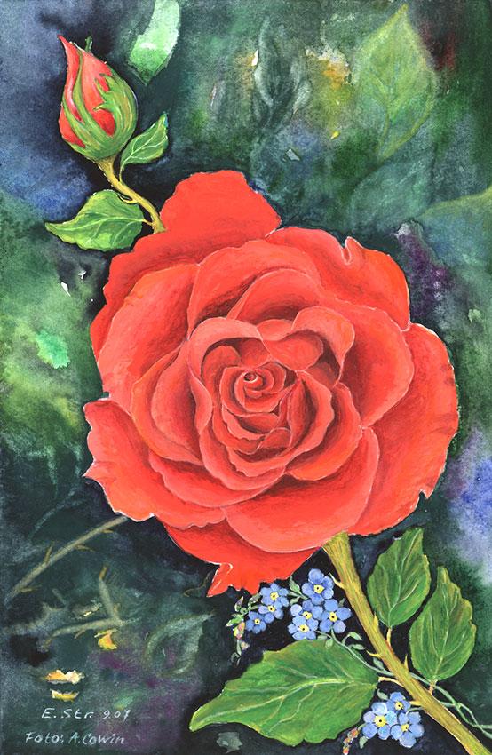 Rote Rose | Größe: 20 x 30 cm